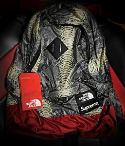 Supreme The North Face Snakeskin Green Daypack Backpack