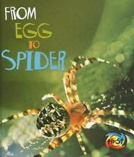 From Egg to Spider-ExLibrary