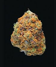 Green: A Field Guide to Marijuana by Dan Michaels Hardcover - May 19, 2015 408pg