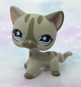 Littlest Pet Shop Authentic # 468 Gray Stripe Short Hair Cat Blue Flower Eyes