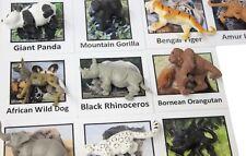 Montessori Endangered Species Animal Match -Miniature Figurine w/ Matching Cards
