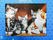 New 500 Piece Jigsaw Puzzle (Little Kittens in a Box)