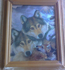 Wolf family picture, pine frame, 10 x 8 in. print, 13 x 11 inch complete