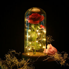 Beauty And The Beast Rose Glass Dome LED Lighted Mother's Day Gift For Her