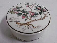 Villeroy & Boch Botanica Bonbon Beers Pot Sugar Bowl Porcelain Pot Lid