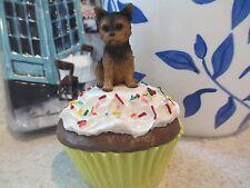 Yorkie Puppy Cut ~ Cupcake Trinket Box
