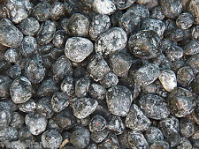 5 LB NATURAL APACHE TEARS size Small to Medium VOLCANIC GLASS  11,000+ CARATS