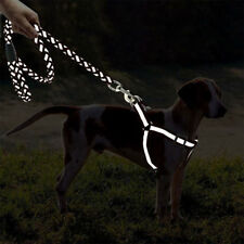 Dog Chain Traction Rope Leash And Harness Set Braided Reflective Harnesses