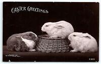 VTG RPPC Postcard Real Photo Easter Greetings Bunnies Rabbits Basket Roto A7