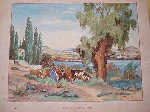 Clement BOYER Nizza Nice Golf AJACCIO Aiacciu Korsika Corse Corsica 1901 Kuh Cow