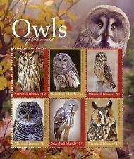 Marshall Islands 2018 MNH Owls of World Barred Striped Owl 6v M/S Birds Stamps