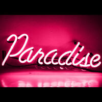 "14""x6""Pink Paradise Neon Sign Light Pub Party Room Wall Decor Visual Artwork"