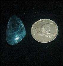 Royal Web (New Landers) Turquoise Cabochon, Old Stock from Nevada, Rough, Gem