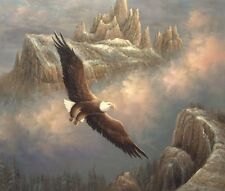 """24""""x20"""" Oil Painting on Canvas, Eagle in Flight, Hand Painted"""