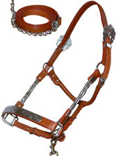 NEW Cob Western Show Halter in Tan Leather & Silver with Matching Chain & Lead