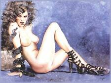 Akt Vintage Foto - PinUp Girl Motiv - leicht bekleidete Frau  (27) /S200