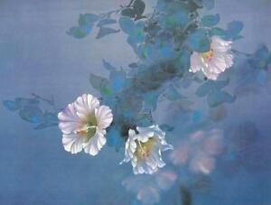 Lavender Light, Offset Lithograph, David Lee