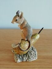 Border fine arts mouse on pear