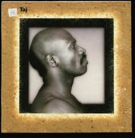 VINYL LP Taj Mahal - Taj Quiex II audiophile Virgin vinyl 1st PRESSING Shrink NM