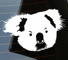 Cute koala Funny Australian Animals Driving licence drop bear Angry car sticker