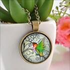 Women Men Vintage Bird Photo Glass Cabochon Bronze Chain Pendant Necklace WC8