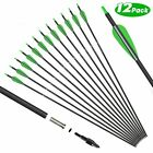 12pcs 30'' Archery Carbon Arrows Hunting Broadheads 100 grain Quiver Bow Target