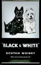 Black & White Scotch Whisky Motif 2 Blechschild Schild Blech Tin Sign 20 x 30 cm