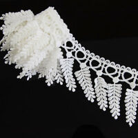 2 Yards Off White Lace Polyester Applique Sewing Trim DIY Crafts Trimming