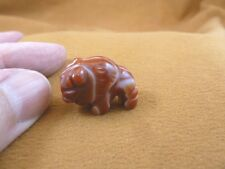 """Y-BUF-511) little 1"""" red white BUFFALO BISON gemstone carving FIGURINE buffaloes"""