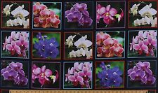 "23.5"" X 44"" Panel Digital Gardens Orchids Orchid Cotton Fabric Panel D487.27"