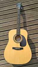 Johnson JD Akustik Gitarre