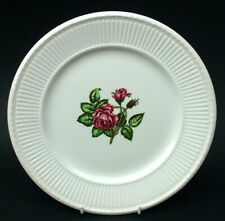 Vintage Wedgwood Moss Rose Pattern Lg Size Dinner Plate 26.5cm - Looks in VGC