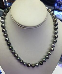 Tahitian 9x10mm Multi Colored  Sea Pearls Great Colors. Great Matches. Round.