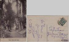# TERNI: BOSCO DELLE GRAZIE   1917