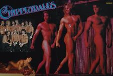 THE CHIPPENDALES - A3 Poster (ca. 42 x 28 cm) - Clippings Fan Sammlung NEU