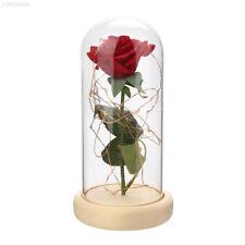 684C LED Floral Decor Rose Glass Cover Prop Valentine'S Day Luminous