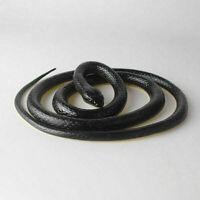 6 x Magnet Magnete 7,5 x 5,5 cm witzige Sprueche Restposten Tombola B2B Posten