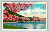 Cherry Blossom Time in DC Washington Monument Vintage Washington DC Postcard