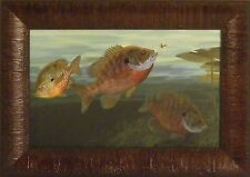 BLUEGILLS by Randy McGovern 11x15 Sunfish Fishing Pan Fish FRAMED PRINT PICTURE