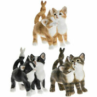 Affection CATS Brown Black or Ginger Figurine Cat Figure Ornament Gift Box 10cm