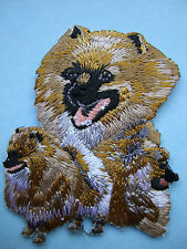 IRON-ON EMBROIDERED PATCH - POMERANIAN - DOG