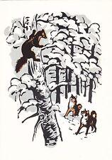 1963 RARE Marten on the tree hunt Husky dogs by Zakharov Russian Soviet postcard
