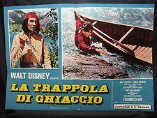 FOTOBUSTA CINEMA - TRAPPOLA DI GHIACCIO - WALT DISNEY - 1961 - AVVENTURA - 03