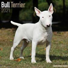 Bull Terrier Calendar 2021 Premium Dog Breed Calendars