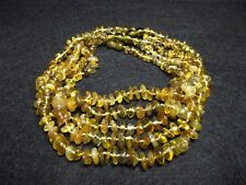 Lot -5 Baltic Amber Baby Necklace  31-33 cm.