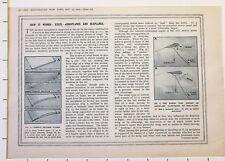 1915 Prima Guerra Mondiale WW1 Stampa Aerei & Seaplanes Propulsion Del Submarine