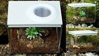 Praying mantis, Stick Insect,Tarantula ,Insect Box Tub Vented NEW STYLE
