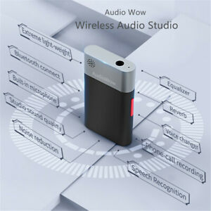 Wireless Recoding Audio Mixer Microphone for Content Creator Hearing Amplifier