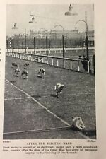 1934-35 Greyhound Racing - Electric Hare - Matted Print