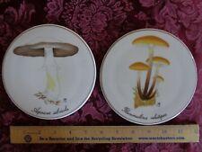 Copenhagen Porcelain, Two Mushroom Plaques, 3523/949, Denmark